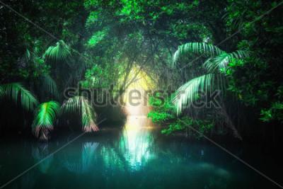 Fototapeta Krajobraz dżungli fantazji turkusowe jezioro tropikalne w lasów namorzynowych z tunelu i drogi sposób przez bujną. Sri Lanka charakter i cele podróży