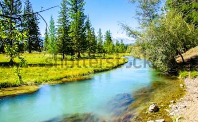 Fototapeta Krajobraz rzeki leśnej. Widok na las rzeczny. Lasowa rzeczna letnia scena. Leśna woda rzeczna