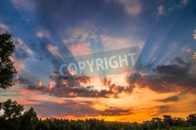 Fototapeta Krajobraz sunrise rano, mglisty ogród