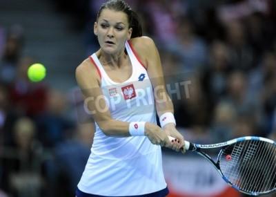 Fototapeta KRAKOW, POLAND - FEBRUARY 7 2015: Agnieszka Radwanska during Fed Cup tennis cup in Poland