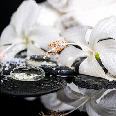 Fototapeta kriogeniczna koncepcji spa z delikatnego białego hibiskusa, zen dowcip
