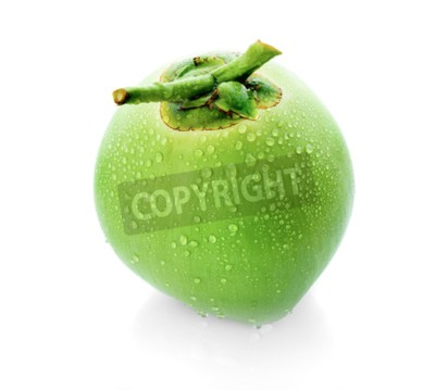 Fototapeta kropla wody zielony kokos na białym tle