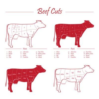Fototapeta Krowy mięsne kawałki wołowiny schemat czerwony na białym