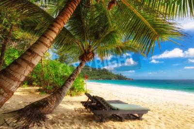 Fototapeta Krzesło Beach na słonecznym wybrzeżu. Seszele. Wyspa Mahe.