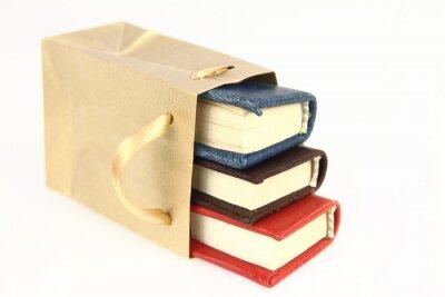 Fototapeta Książki w papierowej torbie