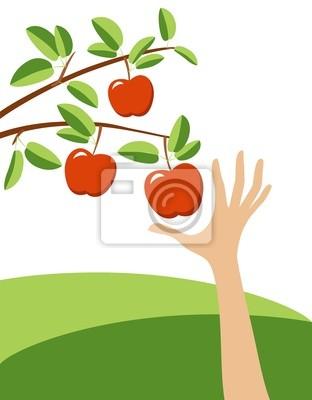 kuszące czerwone jabłko