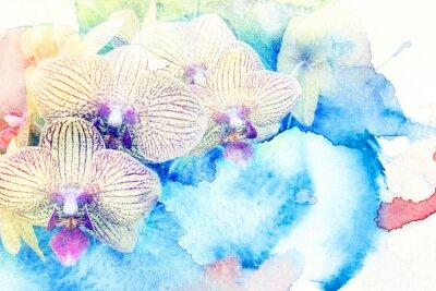 Fototapeta Kwiat Akwarele ilustracji.