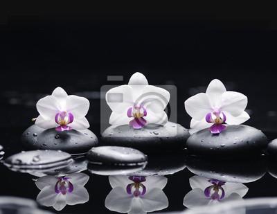 kwiat orchidei i kamienie w kropli wody