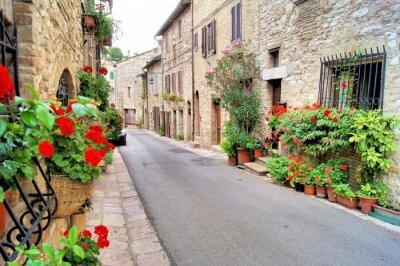 Fototapeta Kwiat wyłożone średniowieczne ulicy w Asyżu, Włochy