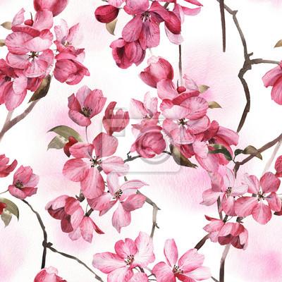 Kwiatowy wzór z różowe kwiaty, akwarela.