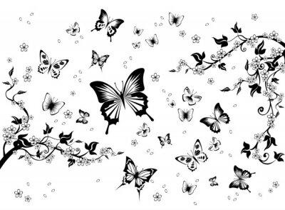 Fototapeta Kwiaty i motyle.