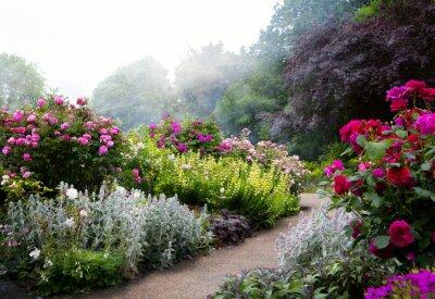 Fototapeta Kwiaty Sztuka rano w parku angielskim