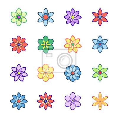 kwiaty ustawione