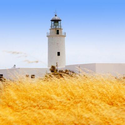 Fototapeta La Mola latarnia morska w Formentera trawą złotym
