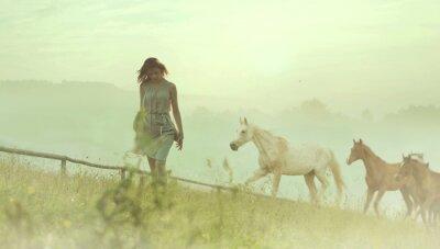 Fototapeta Ładna brunetka pani odpoczynku wśród koni