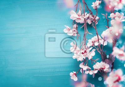 Fototapeta Ładna wiosna czereśniowy okwitnięcie rozgałęzia się na turkusowym błękitnym tle z kopii przestrzenią dla twój projekta. Wiosenne wakacje i koncepcja natury