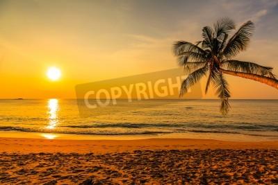 Fototapeta Ładny słońca
