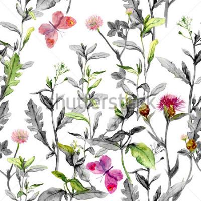 Fototapeta Łąka kwiaty, trawa, zioła. Zamknięte tło ziołowe w czarno-białych kolorach dla modeli modyfikacji. Akwarela