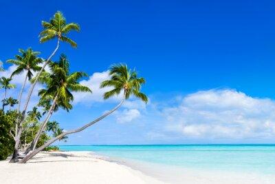 Fototapeta Lato, słońce, plaża i morze w tle