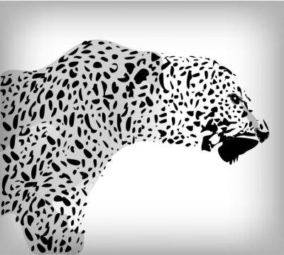 Fototapeta Leopard, abstrakcyjny