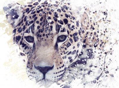 Fototapeta Leopard Portret akwarela