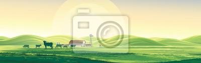 Fototapeta Letni krajobraz wiejski od krów i farmy, świt nad wzgórzami, wydłużony format.