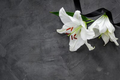 Fototapeta Lily funeral flower on dark stone. Condolence card with copy space