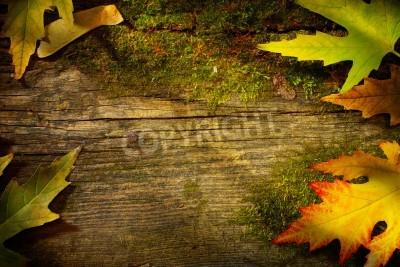 Fototapeta liść jesień sztuki na tle drewna