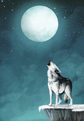 Fototapeta lobo y la luna