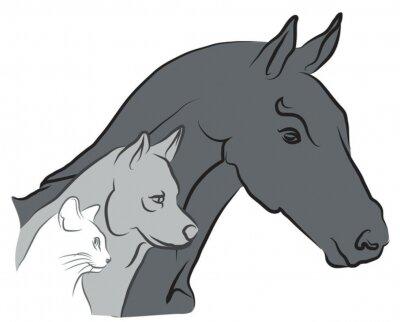 Fototapeta logo czat, chien et Cheval - Weterynaryjny