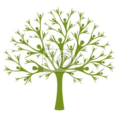 Ludzka drzewo
