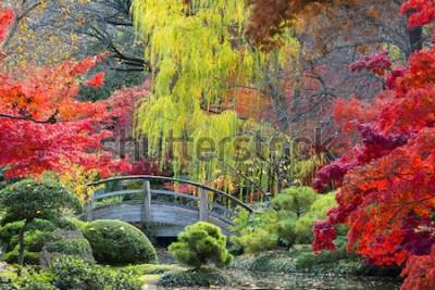 Fototapeta Łukowy drewniany most akcentowany jesiennymi kolorami Texas