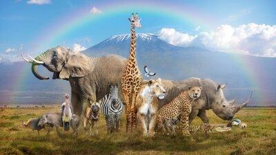 Fototapeta Magical African Wildlife Safari Scene