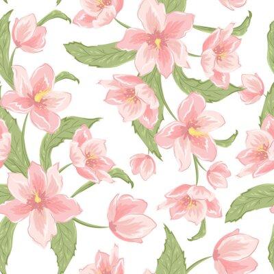 233ad3e2bde1b0 magnolia ciemiernik sakura kwiaty kwitnące szwu. Różowe płatki, zielone  liście, białe tło.