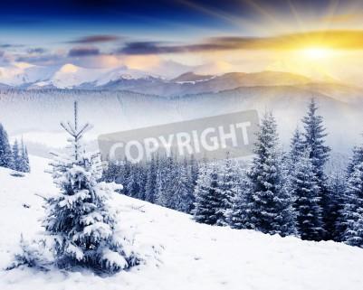 Fototapeta Majestic sunset in the winter mountains landscape. Dramatic sky.