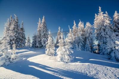 Fototapeta Majestic zimowy krajobraz świecące światłem słonecznym. Dramatyczna scena zimowy. Karpacki, Ukraina, Europa. Piękno świata. Szczęśliwego Nowego Roku!
