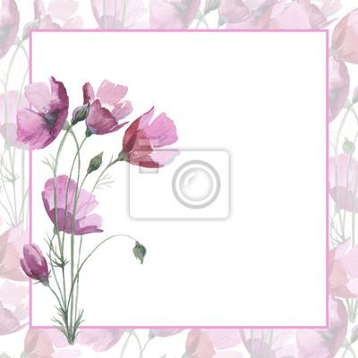 mak Dziki kwiat ramka w stylu akwareli. Pełna nazwa tego zioła: Papaver, mak, mak. Aquarelle kwiaty mogą być wykorzystane do tła, tekstury, wzór, ramki lub obramowanie.
