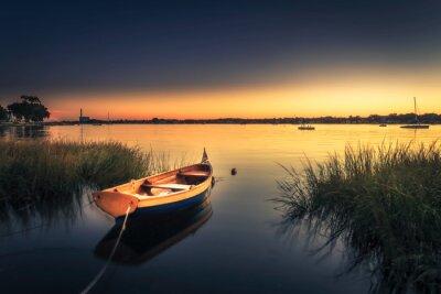 Fototapeta Małe Pomarańczowy łodzi w wysokiej trawie
