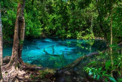Fototapeta Malowniczy błękitny jezioro w dżungli Tajlandia w Krabi