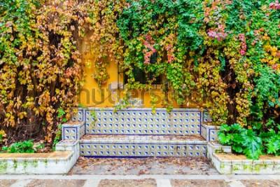 Fototapeta malowniczy obraz ławki z tradycyjnymi płytkami przed ścianą pokrytą winoroślą