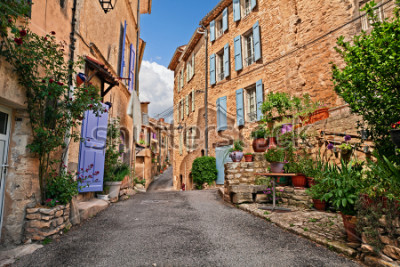 Fototapeta Mane, Forcalquier, Provence, France: picturesque ancient alley in the old town with plants and flowers