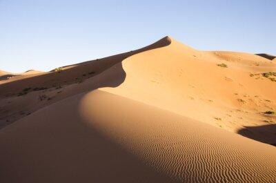 Fototapeta Maroko - Sahara