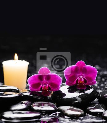 martwa natura z dwiema czerwonymi orchideami i świecami na czarnych kamieniach