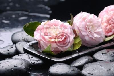 martwa natura z miską różowy kwiat Camellia