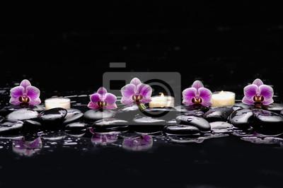 martwa natura z różową orchideą i białą świecą na czarnych kamieniach