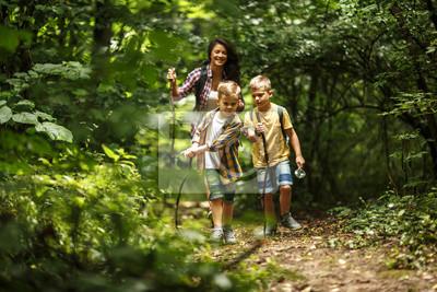 Fototapeta Matka i jej mali synowie wycieczkuje synkliny las.