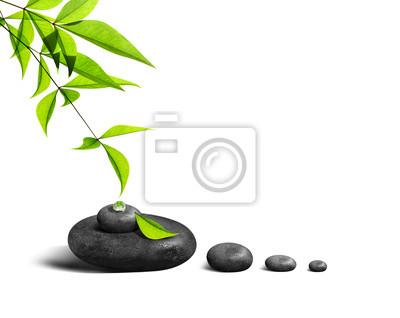 Méditation et Bien Etre 211