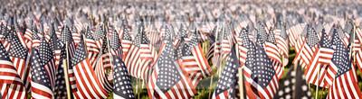 Fototapeta Memoriał z okazji Dnia Pamięci. Tysiące małych flag w polu. Faded kolor vintage. Format baneru