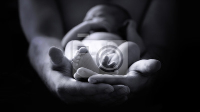 Fototapeta męskiej ręce trzyma noworodka