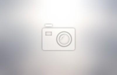 Fototapeta Metal blurred abstract texture. Silver empty background. Metallic grey defocus illustration.
